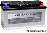 Trimaxx cyclic Batterien